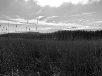 Meadow, Mountains, Sky