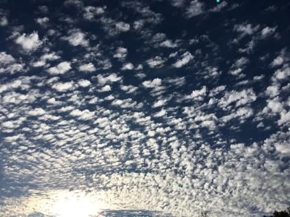October Skypaint (Highland)