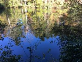 Sandburg Home pond2 (Highland)