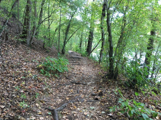 Appalachian Trail by the French Broad River