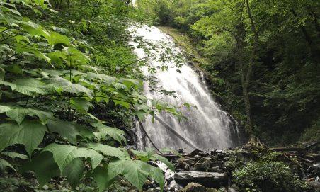 Crabtree Falls (Highland)