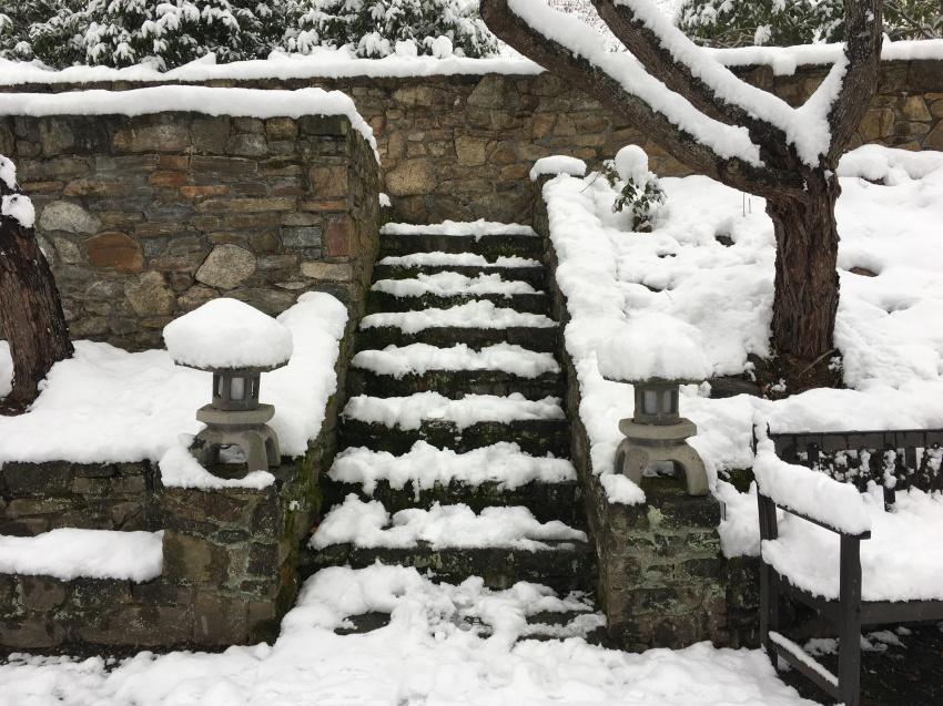 Step into the Season (Highland)
