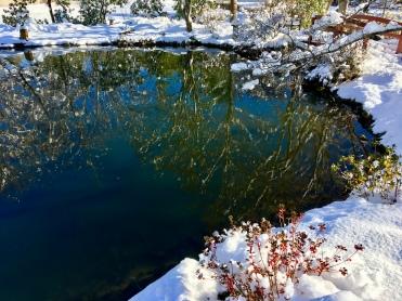 Christmas Reflection (Highland)