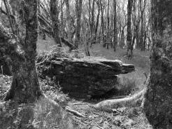 Craggyview Stone (Highland)