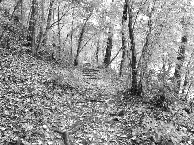 Appalachian Trail, Hot Springs, NC