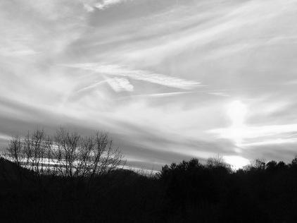 Carolina Sky2