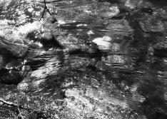 Creeking along. . .