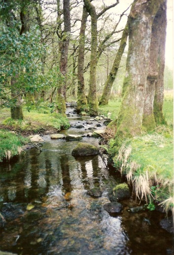 Scotland--Glencoe Burn