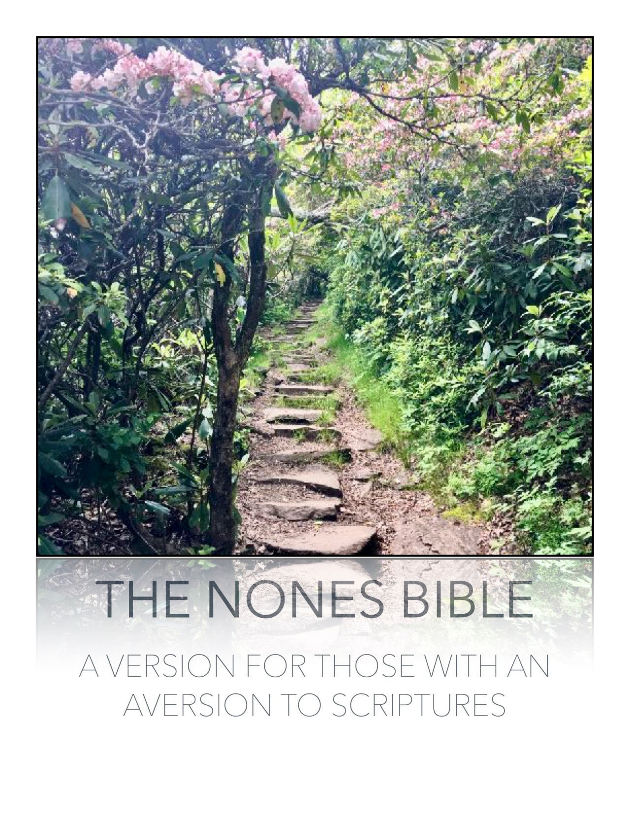 Nones Bible: Chapter Four